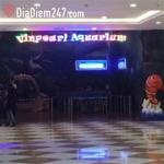 Vinpearl Aquarium - Times City