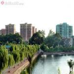 Hồ Văn Quán